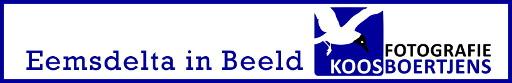 Eemsdelta in Beeld